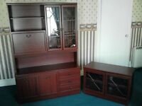 WALL UNIT and TV CABINET