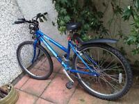 Bike w/ helmet, lights and lock £70 o.n.o