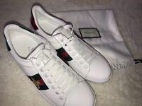 Gucci trainers UK5