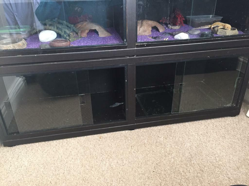 4 Ft Vivarium With Sliding Glass Doors In Strelley