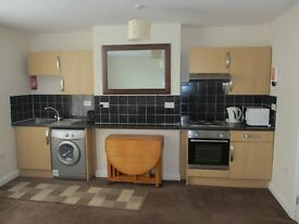 TO LET:New one bedroom spacious flat fully furnished off Ecclesall,Rd S11,8YE