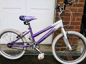 "Girls 20"" wheel bike."