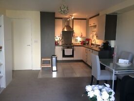 SHORT TERM LET 2 BEDROOM FLAT IN FINSBURY PARK FOR 4 MONTHS. AVAILABLE MID MAY. £650/WEEK.