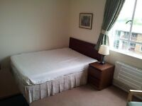 2 double and 2 single rooms in a newly refurbished flat in Southfields