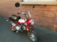 Monkey motorbike 50cc suit camper