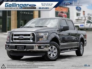 2015 Ford F-150 XLT w/SIDE STEP BARS AND PRIVACY GLASS