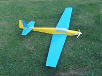 Plane Radio controlled