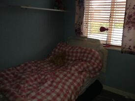 Professional lady or student lodger to share house Central location in Stevenage