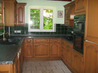 Used kitchen with cabinets, cooker, hob and dishwasher. Good condition.