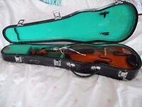 Violin Skylark Student