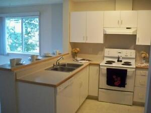 SUITE SPECIALS EVERYWHERE! 1 AND 2 BEDROOMS AVALIABLE! Edmonton Edmonton Area image 6