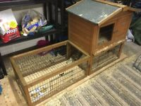 2 male Guinea Pigs. Large wooden, 2 storey hutch. Outdoor pen.