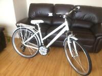 Brand new barracuda Vela 3 ladies bike.