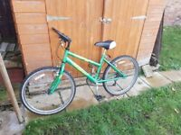 Raleigh Ladies/Teenagers Mountain Bicycle in good condition