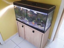 Complete Setup Roma 200 aquarium - Reduced from £350 to £250