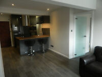 Beautiful 1 Bedroom Flat to let in Balham