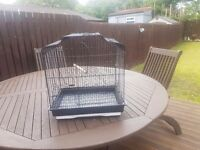Black bird cage