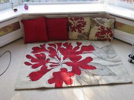 rug and cushions