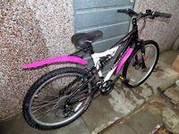 Ladies 17 inch mountain bike