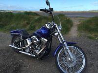 Harley Davidson 1340 fxstc sortail custom