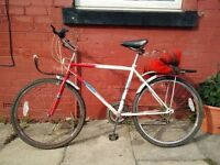 Chariotte Red and White Mountain Bike - new inner tubes + one spare