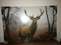Large Stag Print