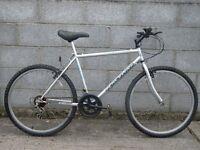 silver mens bike 26'' raceline