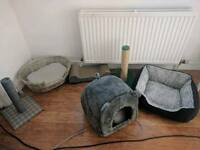 Cat pet items