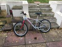 Teenager bike for sale 5-12 years old