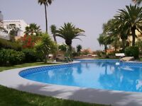 Lovely one bed apartment in the centre of Las Americas, Tenerife