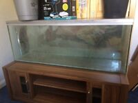 4f fish tank for sale