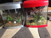 2 X 28l fish tank full set up with light filter gravel ornament all in pic and all work