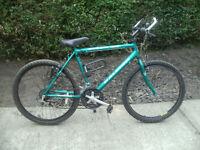Raliegh MAX Mountain Bike