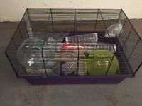 Hamster cage and accessories