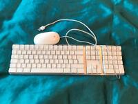 Apple keyboard with mouse