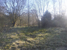 Land For Sale on edge of picturesque Aberfoyle. All services on land. - approx 0.8 acre plot.