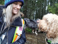 Experienced and Professional Dog Walking/Dog Walker and Pet Sitter in Wokingham