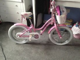 Trek Bike Child