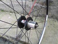 American Classic / Kinlin xc279 700c rear bike wheel 8 9 10 speed shimano