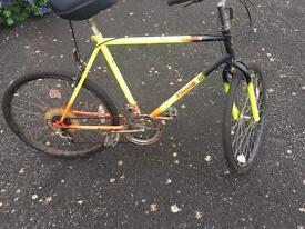 Men's bicycle