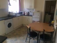 Light, single bedroom available in shared accommodation