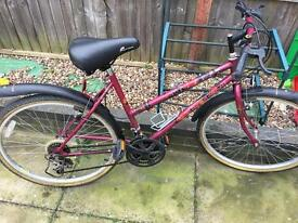 Ladies Raleigh bike