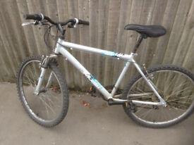 mountain bike Raleigh grey