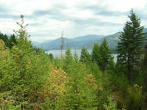 Lot 6 Chase Rd  Christina Lake