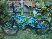 STOLEN HALF INCH BMX BIKE ( NOT STOLEN BUT BRAND )