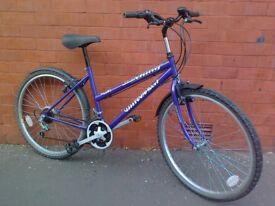 Universal Mountain Bike - Mudguard !