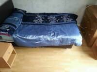 Single room available in houseshare