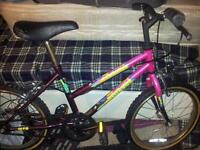 Girls Bike age 6+. pink and purple. great Christmas gift . Good condition. call if interested.
