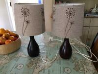 Two matching bedside lamps.