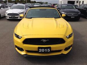 2015 Ford Mustang GT Premium London Ontario image 8